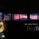 BB Trailer